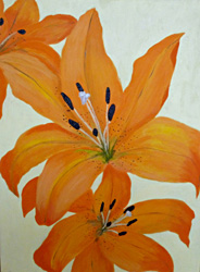 Orange Lilies (click to enlarge)